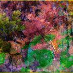 Astratto 1....Il bosco fiabesco di Renzo Baggiani