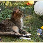 Astrid hat Geburtstag
