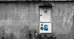 Asyl für Snowden