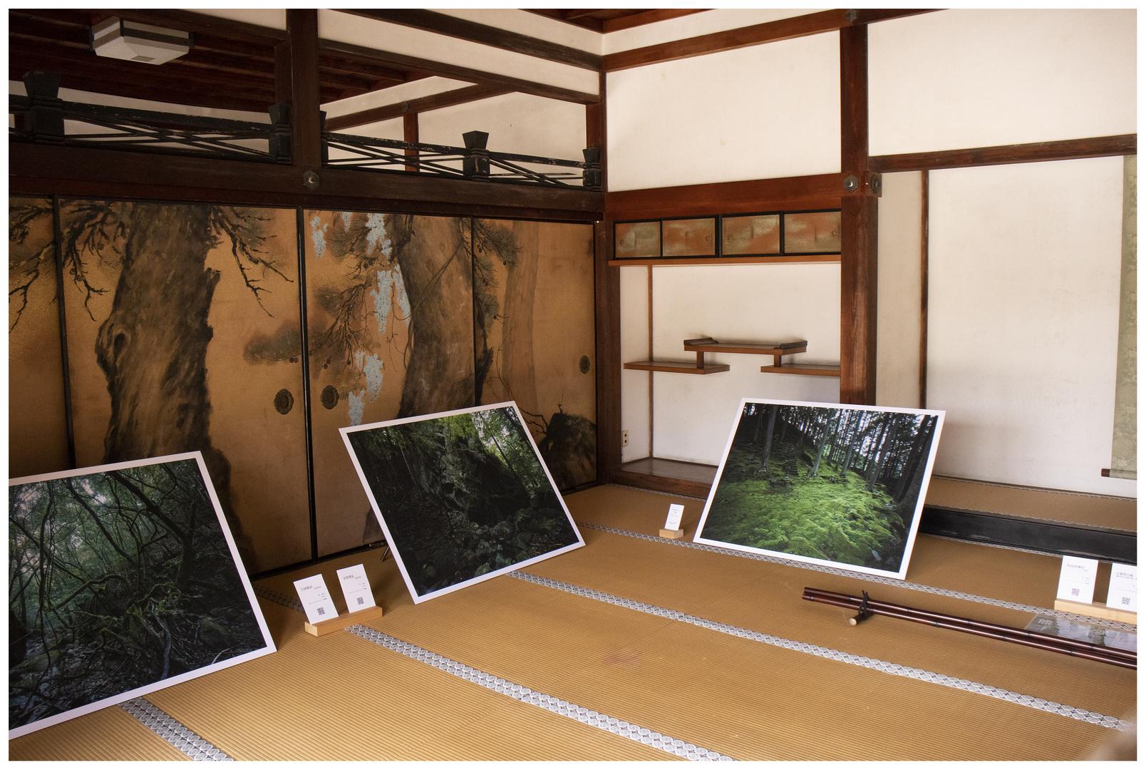 At Ninnaji Temple in Kyoto 4