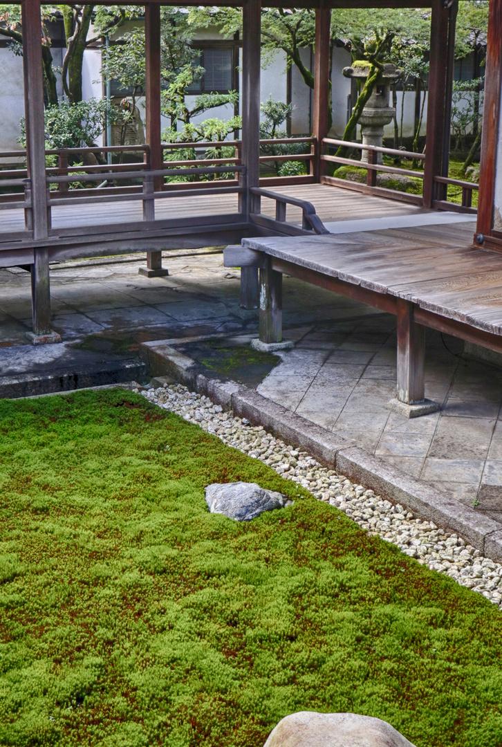 At Ninnaji Temple in Kyoto 8