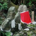 At Ryoanji Temple