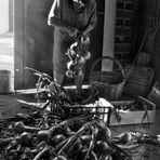 Atando las cebollas