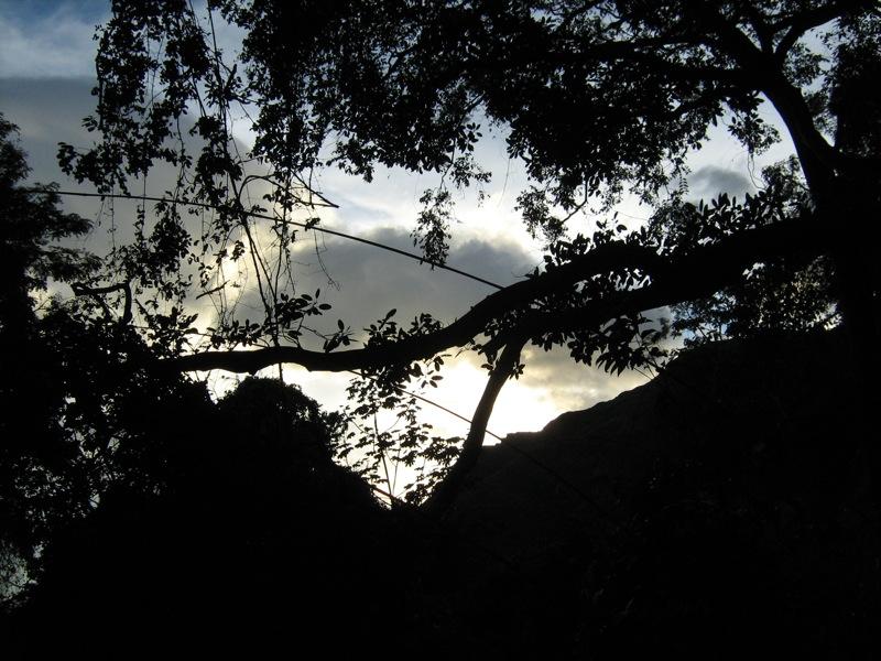 Atardecer en la montaña. Entre ramas y árboles
