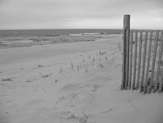 Atlantik bei Ocean City (USA) (sw)