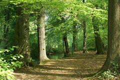 Atme den Wald