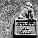 Attenti al cane (Beware of the dog)