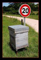 Attention - Sortie de ruche - 20 Kms MAXI !!