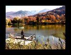 Au bord du lac... Libres pensées