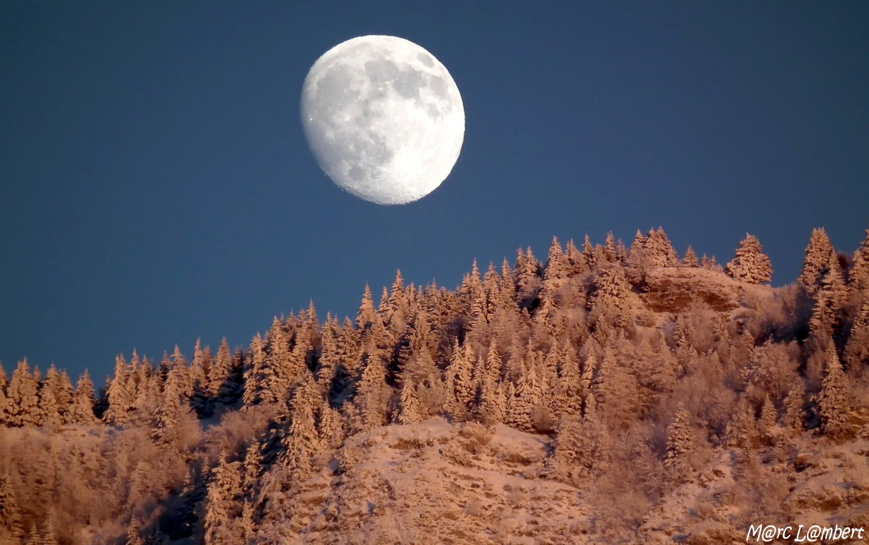 Au Clair de la Lune, sur la forêt du Revard