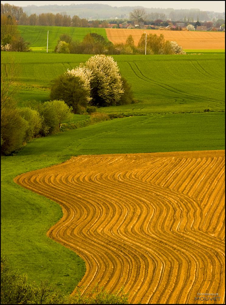 au-dessus des champs