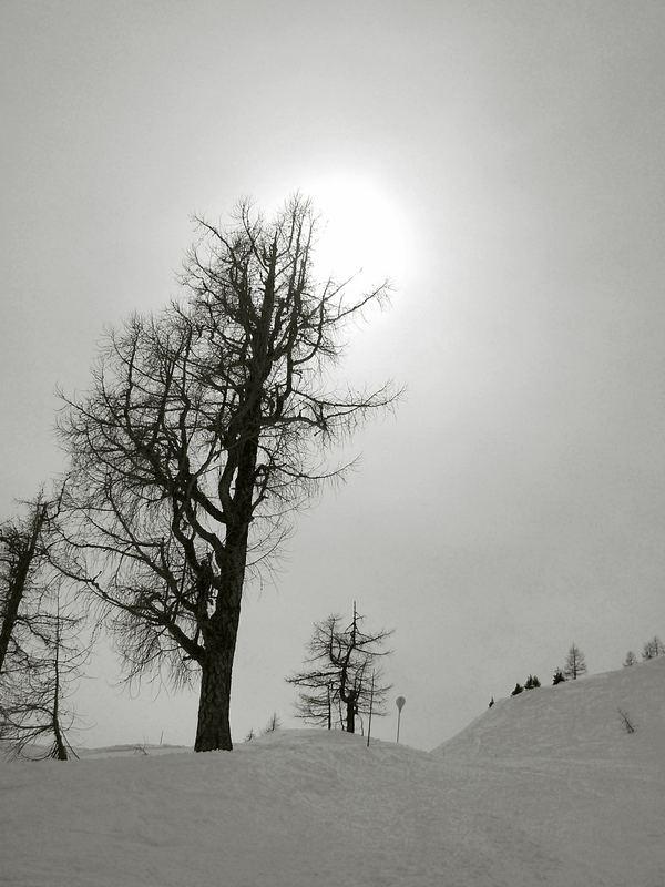 au détour d'une piste à Chamonix