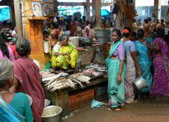 Au marché aux poissons ... / At the fishmarket...