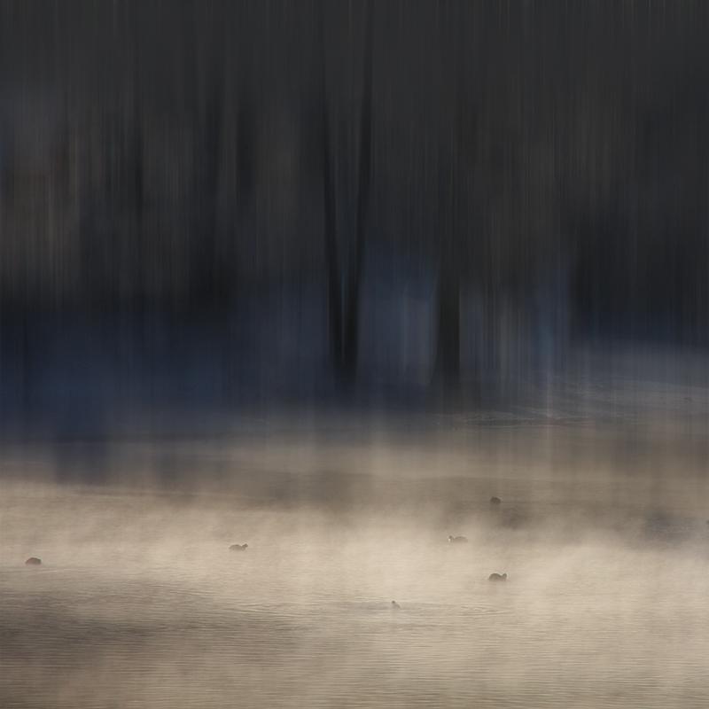 Au temps des brouillards de novembre...