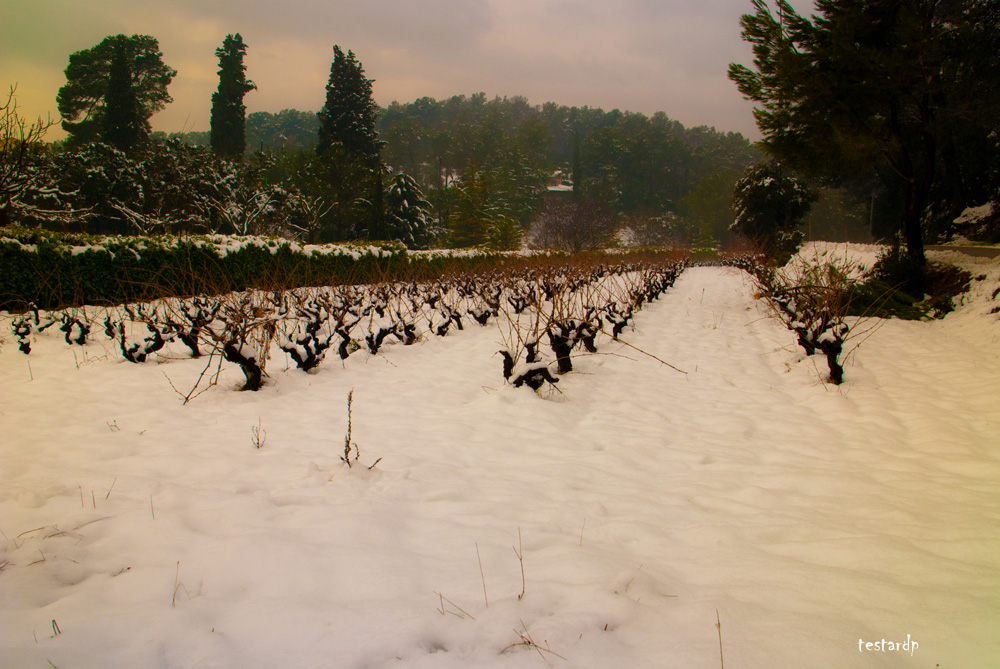aubagne sous la neige 3