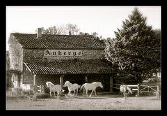 - Auberge de cheval blanc -