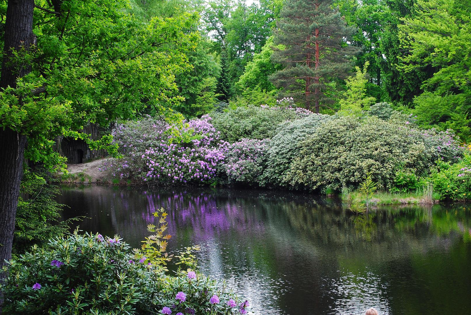 auch an grauen Tagen schön - der Park von Kromlau
