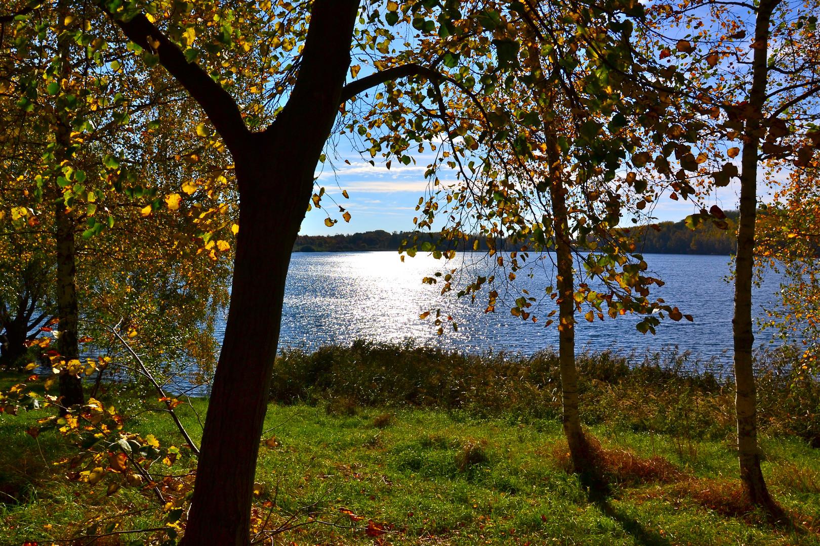 """Auch an unserem """"Kulki"""" ist der Herbst eingezogen"""