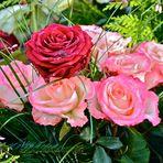 Auch auf dem Friedhof sind Blumen wunderschön