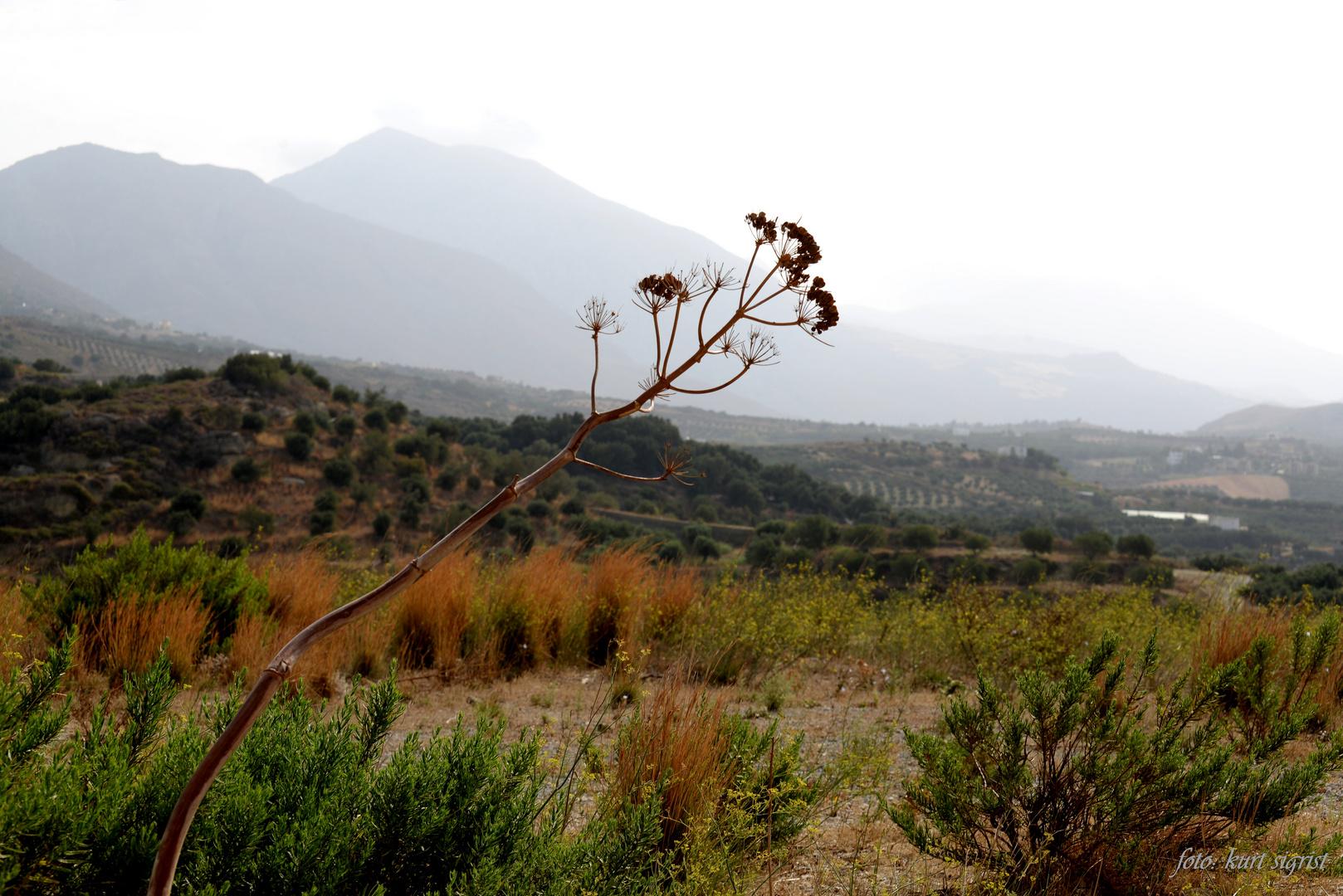Auch auf Kreta zieht der Herbst ein