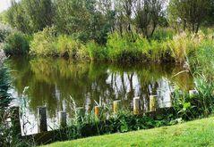 Auch das ist Borkum / Idylle am Tüskendörsee