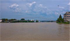 Auch der Rhein ist voll