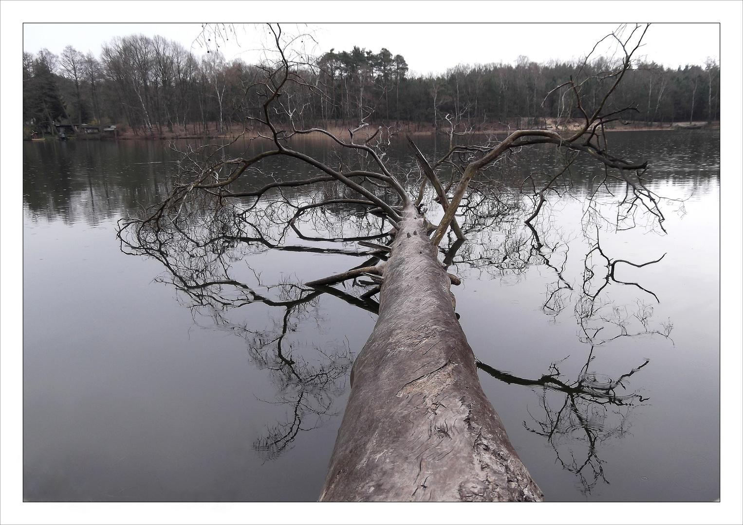 ...auch der See weint leise Tränen.......