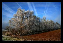 Auch dieser Winter hat schöne Stimmungen :)