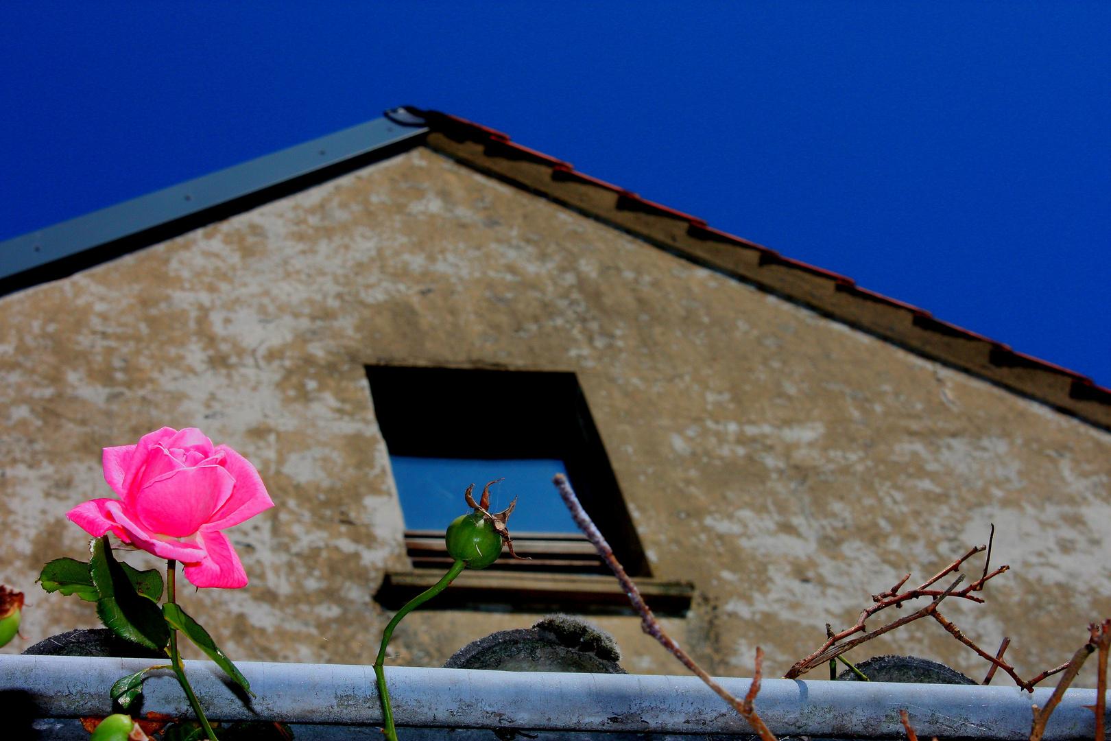 Auch ein altes Haus kann träumen