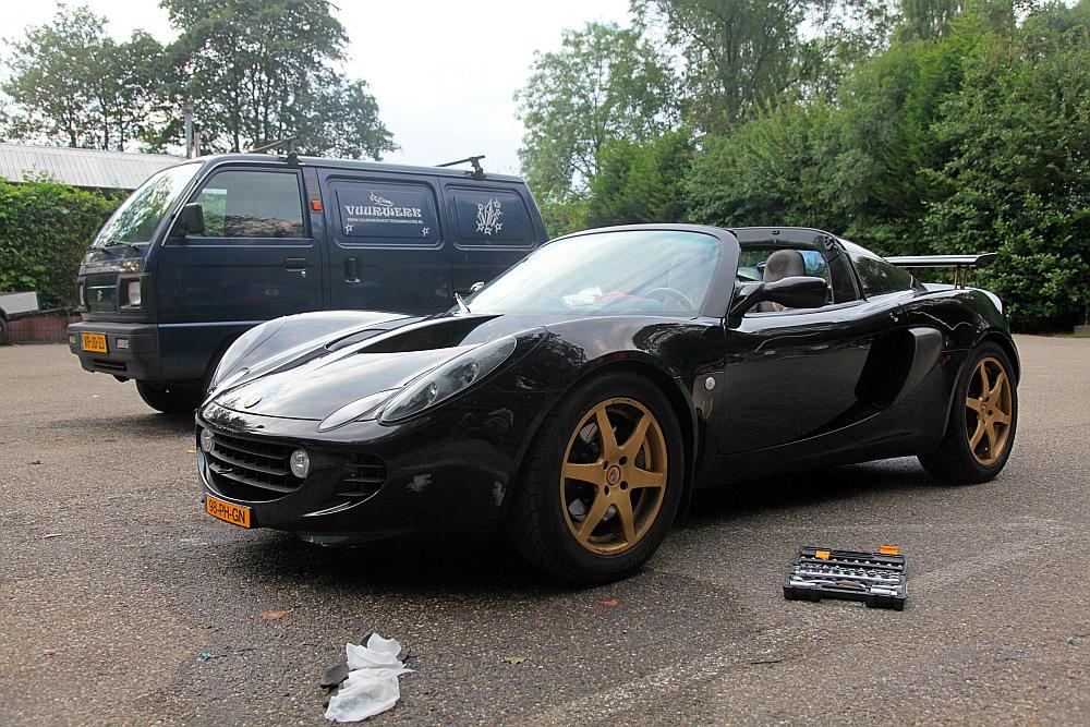 Auch ein Lotus glänzt...