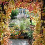 Auch im Herbst den richtigen Durchblick behalten