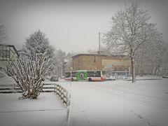 Auch im tiefsten Schnee.....