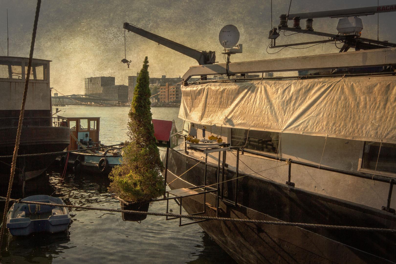 Auch In Amsterdam Wird Mal Wieder Weihnachten Foto Bild