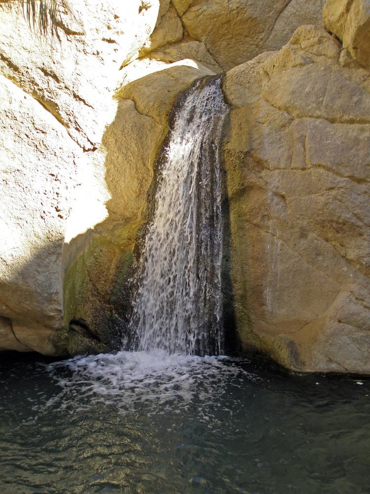 auch in der Wüste gibt es Wasser