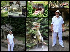 Auch Jurassicpark