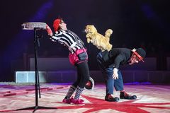 Auch Katzen können Circus