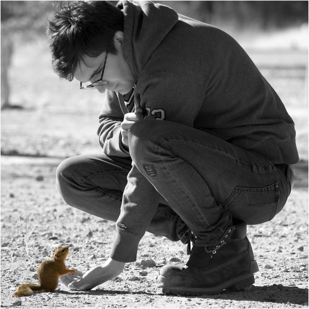 auch kleine Tiere...