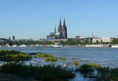 Auch Köln ist immer wieder schön