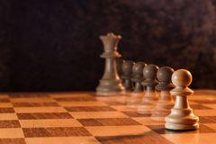 auch Schachfiguren haben Träume