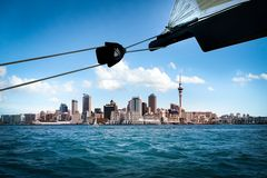 Auckland // America's Cup Race