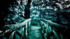 Auenland Version 5 - Mystique Night -