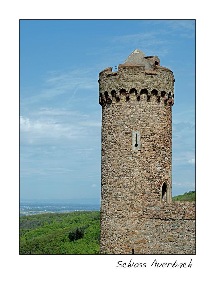 Auerbacher Schloss (3)