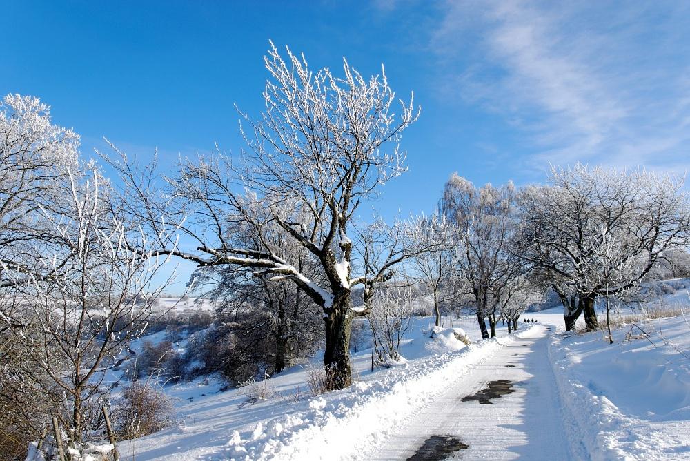 auf, auf - der winterliche Weg wartet