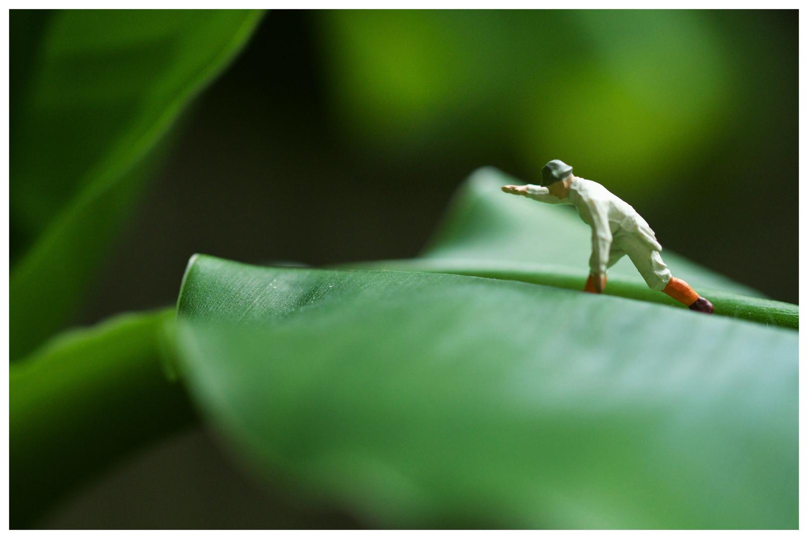 auf Blätter laufen