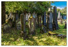 Auf dem alten jüdischen Friedhof