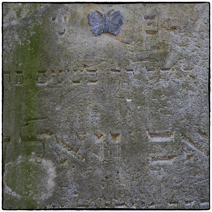 Auf dem alten jüdischen Friedhof in Groß Neudorf (1)