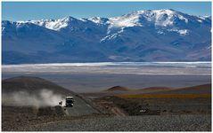 Auf dem Altiplano in 4400 Meter Höhe