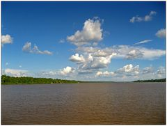 Auf dem Amazonas 1