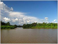 Auf dem Amazonas 2