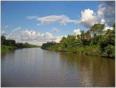 Auf dem Amazonas 4